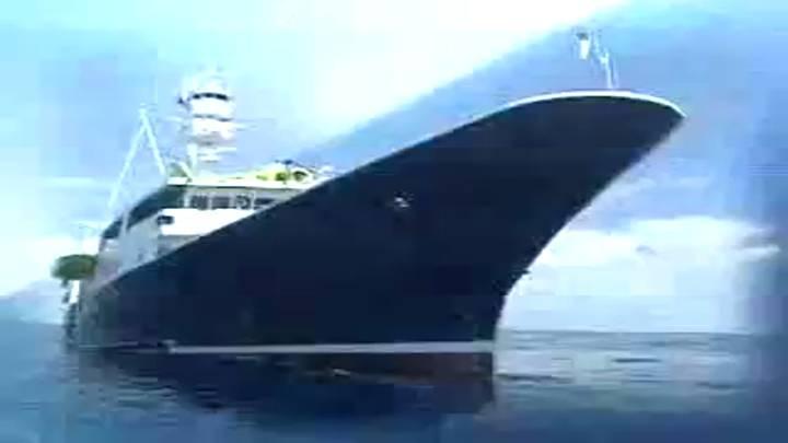(01/23 방영) 특집 <바다! 이제는 경쟁력이다> 제2부 고부가가치를 노리는 은빛고기, 멸치