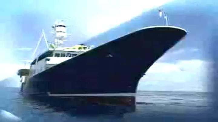 (02/13 방영) 특집 <바다! 이제는 경쟁력이다> 제5부 겨울바다의 보약 미역