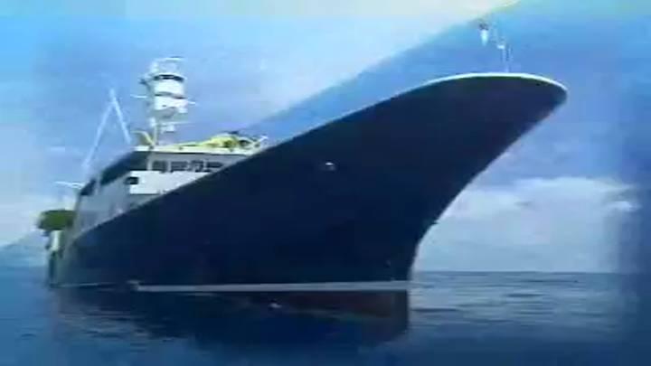 (03/13 방영) 특집 <바다! 이제는 경쟁력이다> 제9부 수산폐기물 새로운 활로를 찾다!