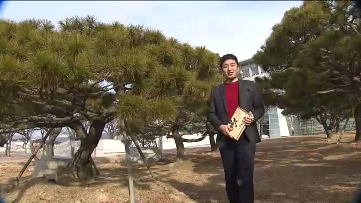 (01/21 방영) 1월 21일 방송(공병철 경남예총회장)