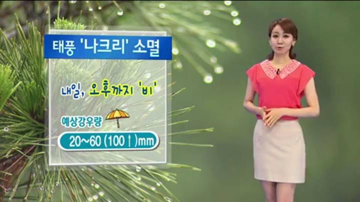 뉴스아이 날씨 8월3일(일)-태풍 나크리 소멸 내일(4) 오후까지 비