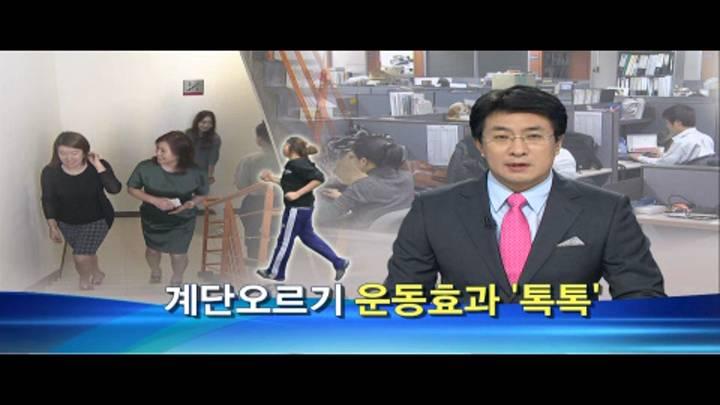 계단오르기 운동효과 '톡톡'