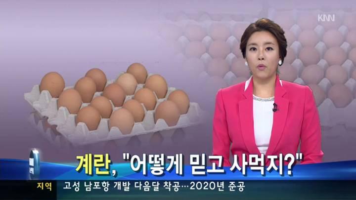 불량 계란, 아무도 모른다