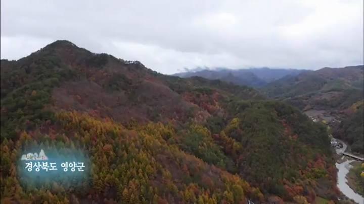 (12/28 방영) 6부 하늘 아래 첫 동네 영양 포산마을