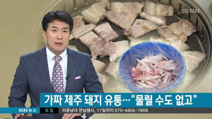 저급 돼지고기 제주산 둔갑,악덕 업체대표 적발