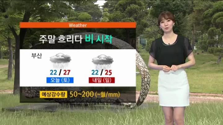 모닝와이드 날씨2 7월11일(토)
