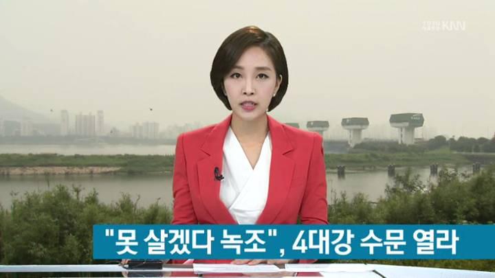 """'녹조창궐' 낙동강, """"수문 좀 열어달라"""""""