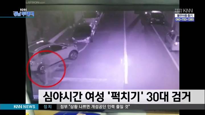 심야시간 여성 '퍽치기' 30대 검거