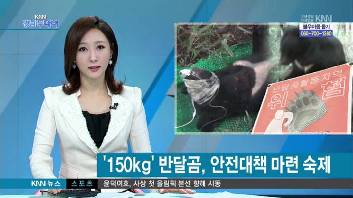 """150kg 반달가슴곰, """"안전 강화 해야"""""""