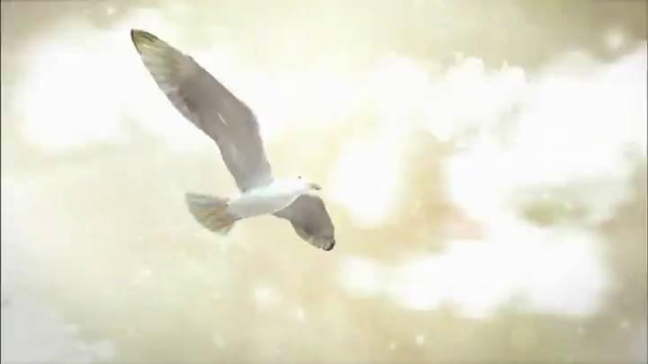 (02/07 방영) 소금, 오래된 미래