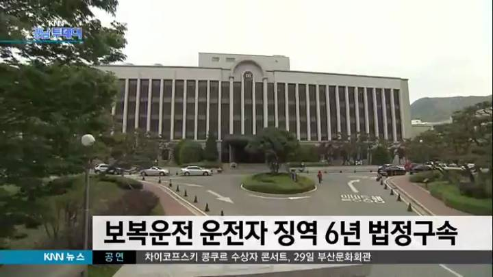 보복운전 화물차 운전자 징역6년 법정구속