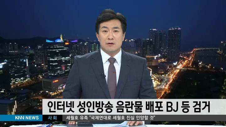 인터넷 성인방송 음란물 배포 BJ 등 검거