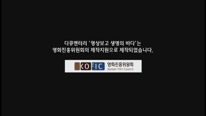 (05/29 방영) 창사특집 영상보고,생명의바다
