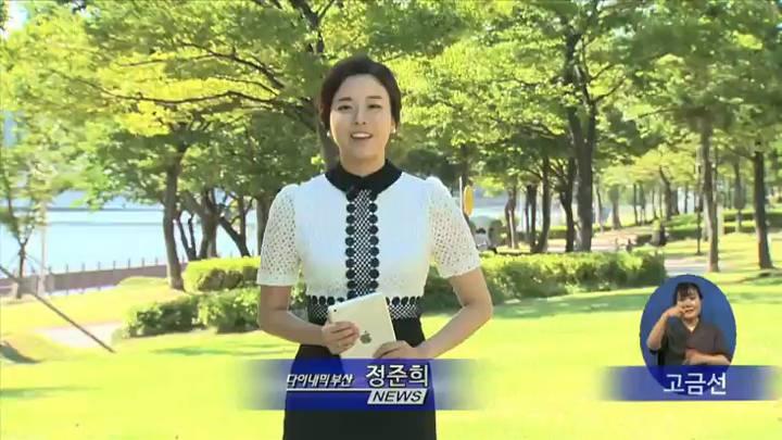 2030부산등록엑스포 시민염원 정부에 전달