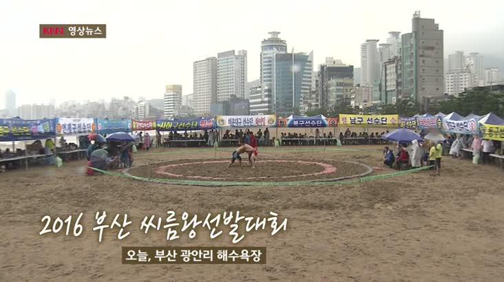 (09/02 방영) 영상뉴스