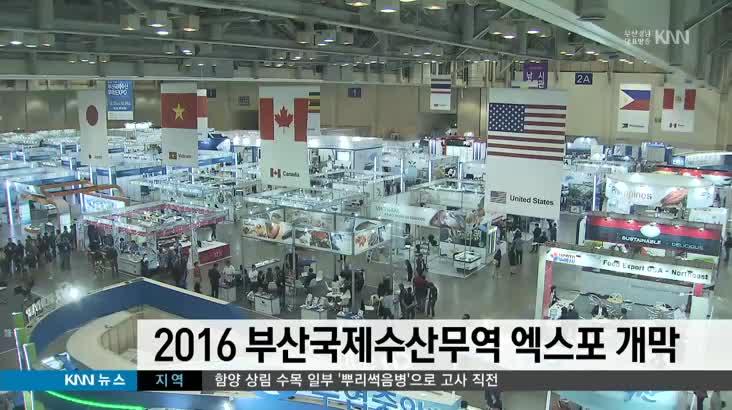 2016 부산국제수산무역 엑스포 개막(단신)