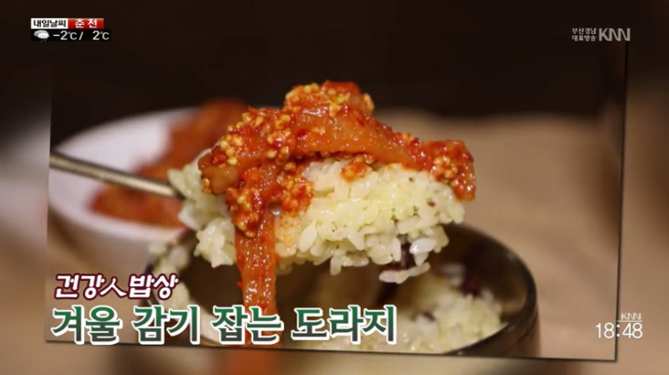 (12/13 방영) 건강인밥상 – 도라지식해, 소문난 맛집 – 겨울철 원기회복 영양식 낙지