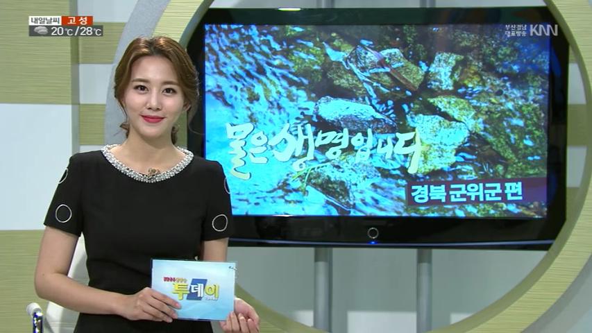 (08/31 방영) 물은 생명입니다 – 경북 군위군 우보면 선곡리, 조상영의 하하호호 – 정통일식돈가스