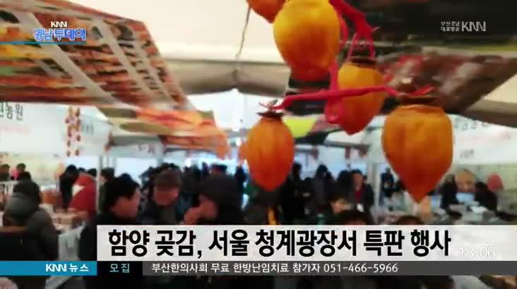 함양 곶감,서울 청계광장서 특판 행사