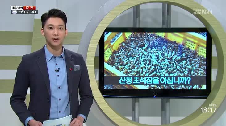 (01/18 방영) 맛도 좋고 몸에도 좋은 초석잠을 아십니까, 추억을 수집합니다 – 추억수집가 김희창 씨