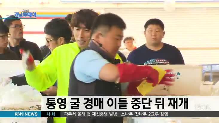 통영 굴 경매 오늘(2) 재개