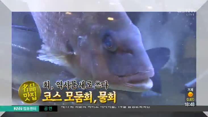 (02/10 방영) 해운대 왕가박가 ☎051-747-8820