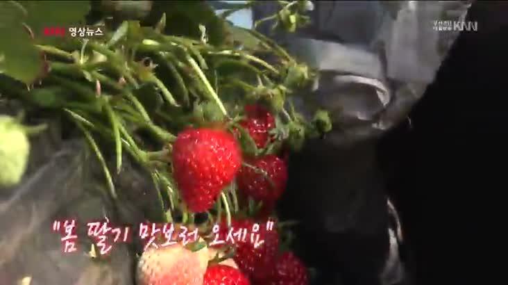 (02/24 방영) 영상뉴스