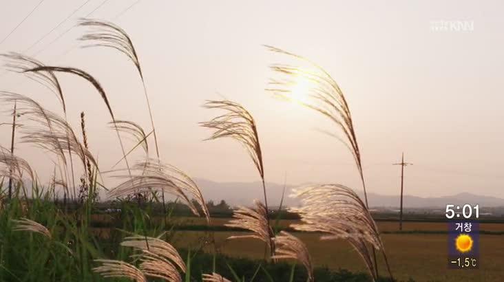 (03/12 방영) 쌀을 다시보다