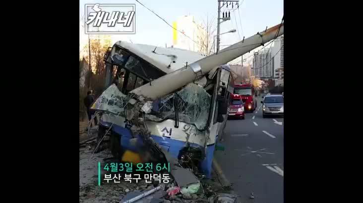 [캐내네]만덕에서 시내버스가 전신주 들이받아