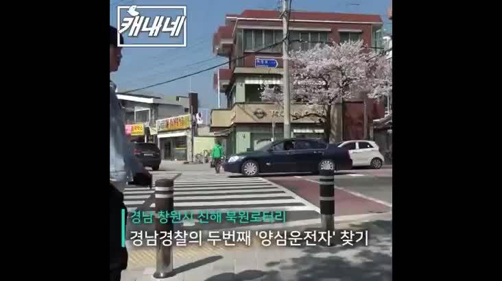 [캐내네]경남경찰의 양심운전자 찾기-진해편