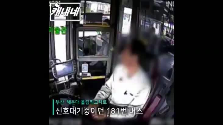 [캐내네]해운대 6중추돌사고 승객을 먼저 챙기는 버스기사님