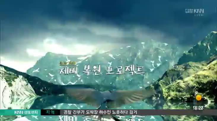(04/11 방영) 제비복원프로젝트