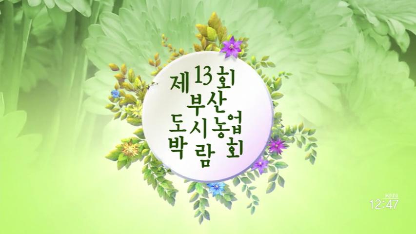 (04/21 방영) 2017 제13회 부산도시농업박람회