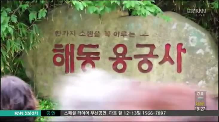 (07/31 방영) 용궁사 주차장 더시랑 ☎051-722-8881