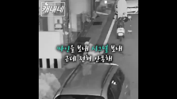 [캐내네]길에서 잠든 만취자 가방 절도 사건