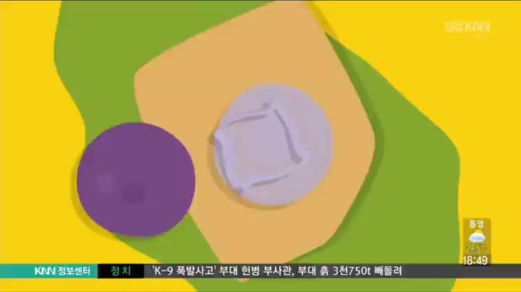 (08/23 방영) 연제구 시청옆 금수저묵은지김치찜 ☎051-853-3700