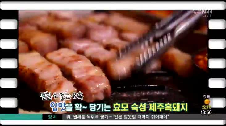 (08/29 방영) 인제대부근 제주흑돼지 ☎055-322-4750