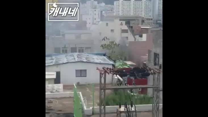 [캐내네]제보-서면 경찰학원 인근 화재 발생