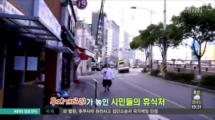 (10/10 방영) 범일동 시민회관 근처 미식가의 구이 ☎051-925-6471