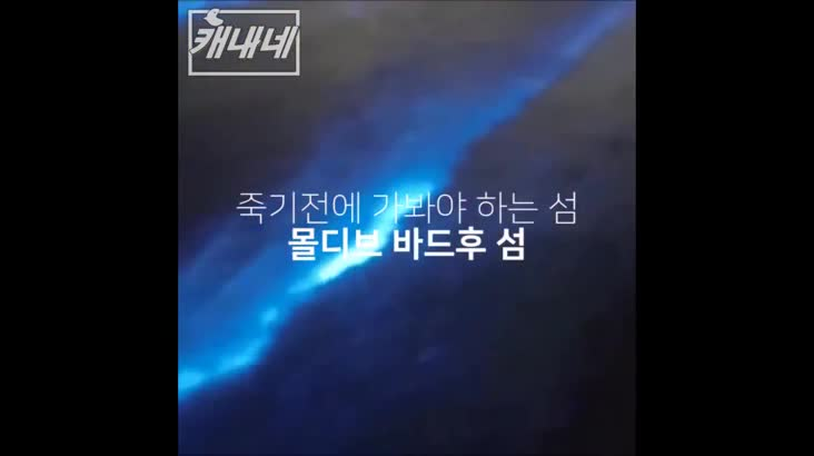 [캐내네]푸른빛 반짝이는 바다