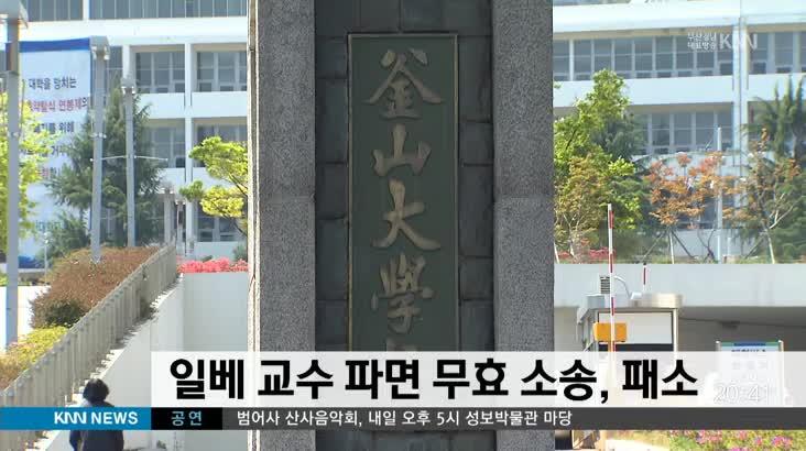 일베 교수 파면 무효 소송, 패소
