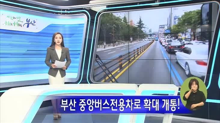 부산 중앙버스전용차로 확대 개통!