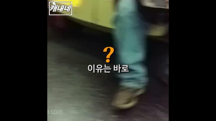 [캐내네]지하철 안을 혼비백산으로 만든 것은?