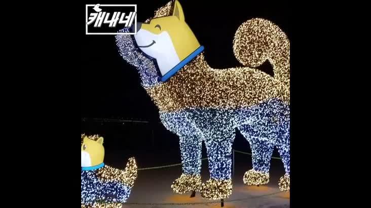 [캐내네]광안리 새해 복 많이 받으세요