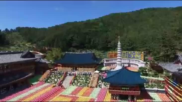 (05/03 방영) 불기2561년 부처님오신날 봉축大법요식