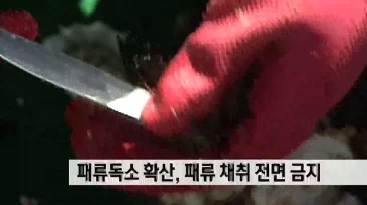 부산경남 패류독소 확산, 패류 채취 전면 금지