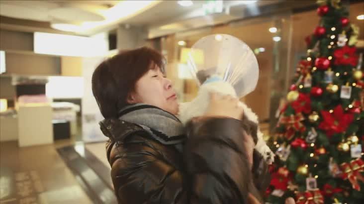 (03/18 방영) 동물메디컬 닥터V