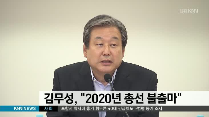김무성, 2020년 총선 불출마