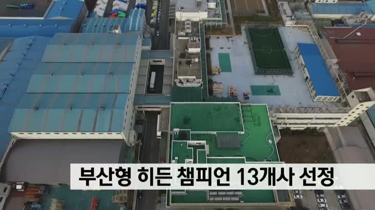 부산형 히든챔피언 기업 13개사 선정