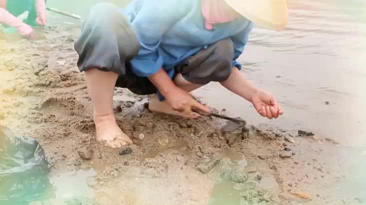 (08/31 방영) 제4회 알프스하동 섬진강 문화재첩축제